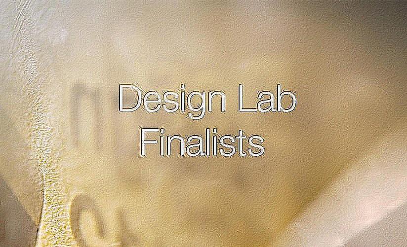 design lab 2013